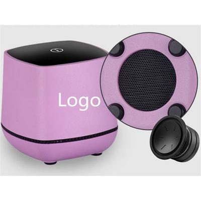 Multimedia Desk Style Speaker